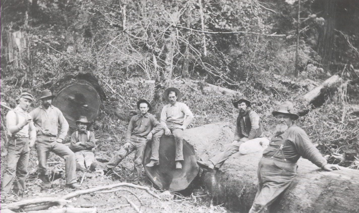 Loggers in the redwoods working for Woodruff Creek Mill