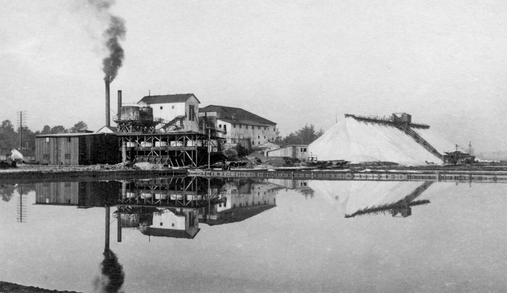 Archival photo of salt mining operation in San Mateo County