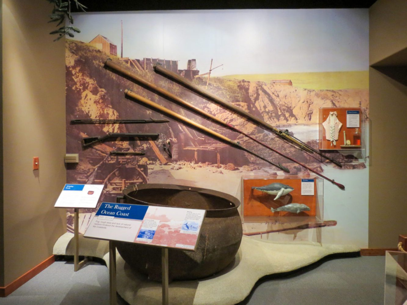 Exhibit display of whaling tools at Natures Bounty at the San Mateo County History Museum