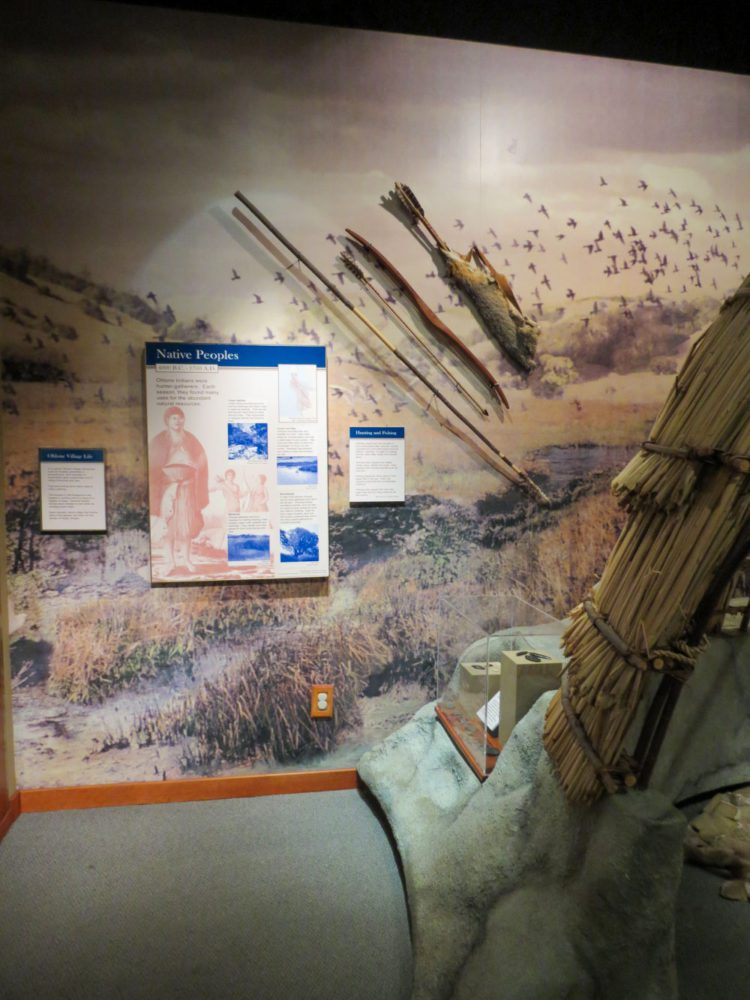 Exhibit display of Ohlone tools at Natures Bounty at the San Mateo County History Museum