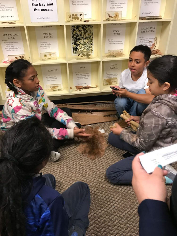 Students interacting with Ohlone materials at Providing Plenty school program at the San Mateo County History Museum